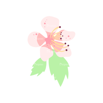 Cherry Blossom Flowers 09 Clip Art - SVG & PNG vector