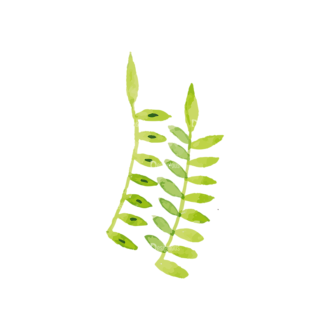 Foliage Tiny Flowers 12 Clip Art - SVG & PNG vector