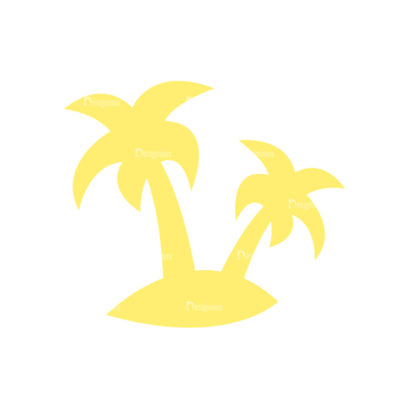 Exotic Fruits Palm Trees 11 1