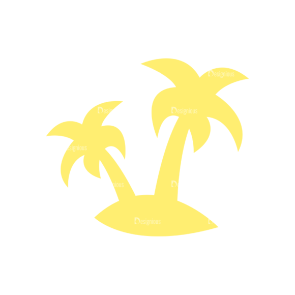 Exotic Fruits Palm Trees 13 1