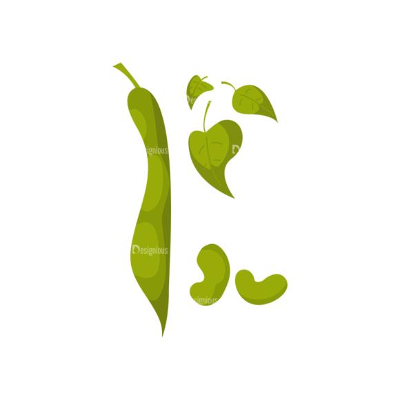 Farming Plants Beans 1