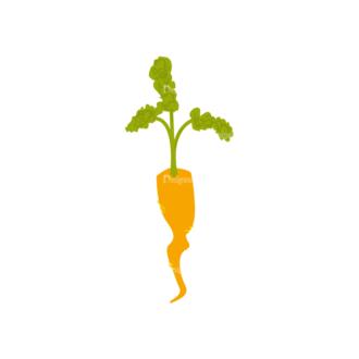 Farming Plants Carrot 03 Clip Art - SVG & PNG vector