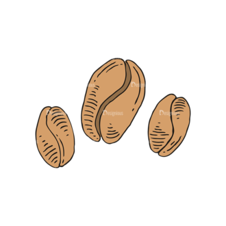 Engraved Coffee Vector Set 1 Vector Coffee Beans 07 Clip Art - SVG & PNG vector