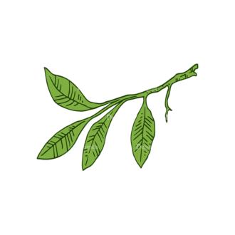 Engraved Lemons Vector Set 1 Vector Leaves Clip Art - SVG & PNG vector