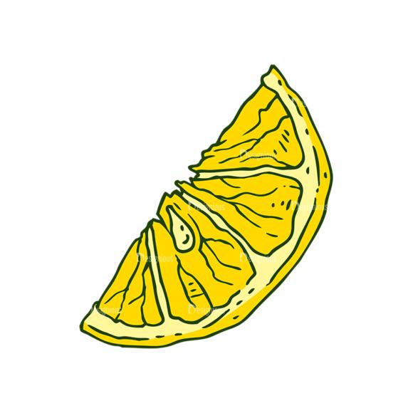 Engraved Lemons Vector Set 1 Vector Lemon 03 5