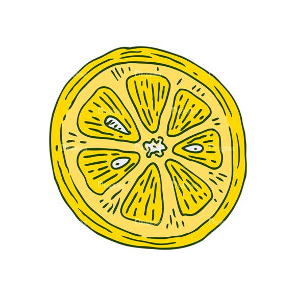 Engraved Lemons Vector Set 1 Vector Lemon 04 1