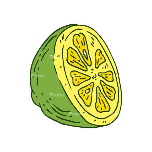 Engraved Lemons Vector Set 1 Vector Lemon 05 Food drinks engraved lemons vector set 1 vector lemon 05