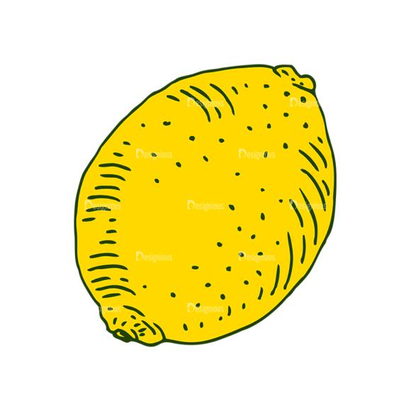 Engraved Lemons Vector Set 1 Vector Lemon 07 1