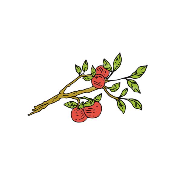 Engraved Vintage Apple Vector Set 1 Vector Apple 03 1