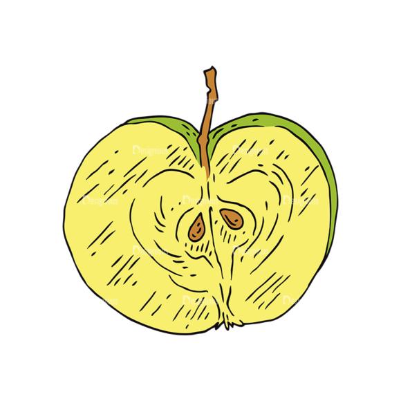 Engraved Vintage Apple Vector Set 1 Vector Apple 04 1
