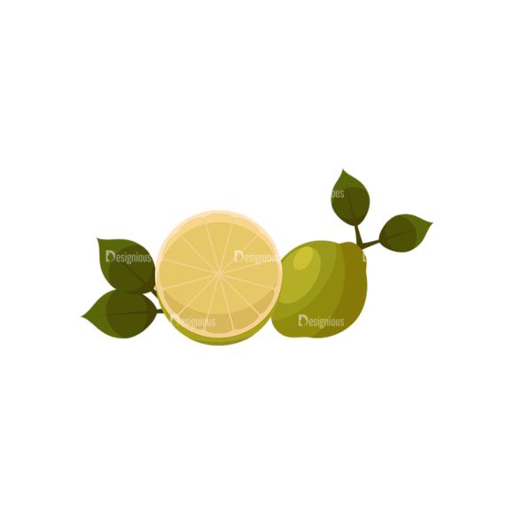 Exotic Fruits Vector Set 1 Vector Lemon 01 1