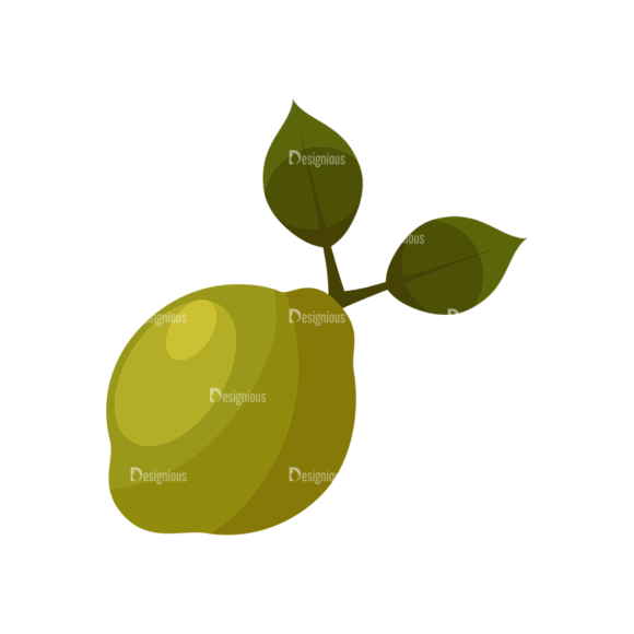 Exotic Fruits Vector Set 1 Vector Limes 1