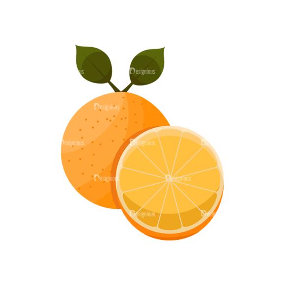 Exotic Fruits Vector Set 1 Vector Oranges 02 1
