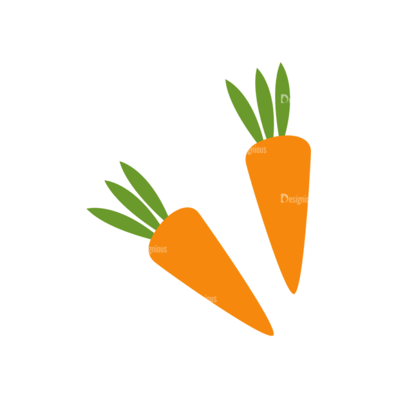 Food And Products Vector Set 7 Vector Carrots 1