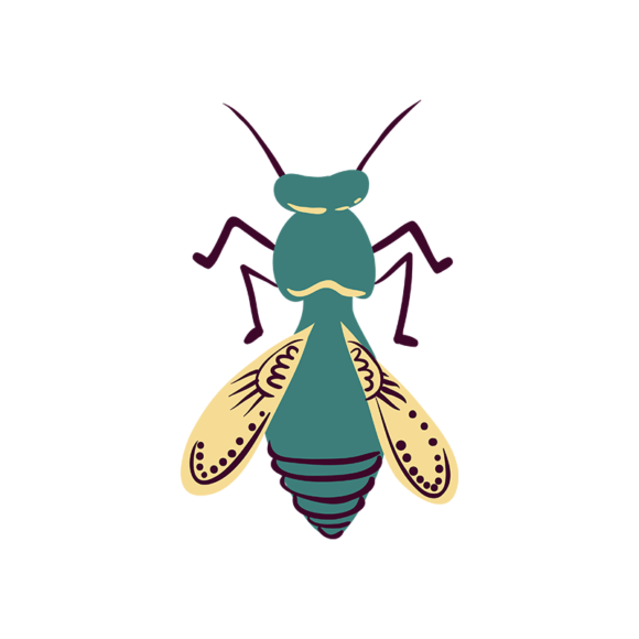 Insects Hornet 1