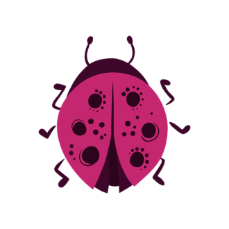 Insects Ladybug Clip Art - SVG & PNG vector