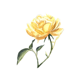 Roses Yellow 04 Clip Art - SVG & PNG vector