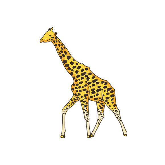 Africa Animals Vector 1 Vector Giraffe africa animals vector set 1 vector giraffe