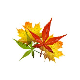 Autumn Elements Vector Leaves 24 Clip Art - SVG & PNG vector