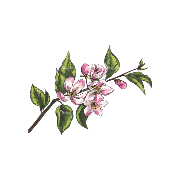 Blossomed Branches Vector 1 1 blossomed branches vector 1 1 preview
