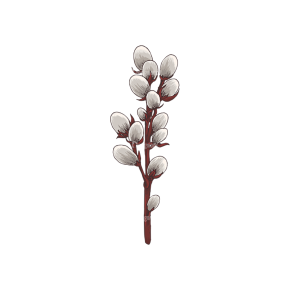 Blossomed Branches Vector 1 7 5