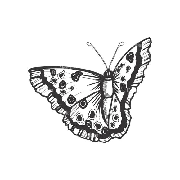 Butterflies Vector 1 1 5