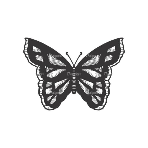 Butterflies Vector 1 10 1