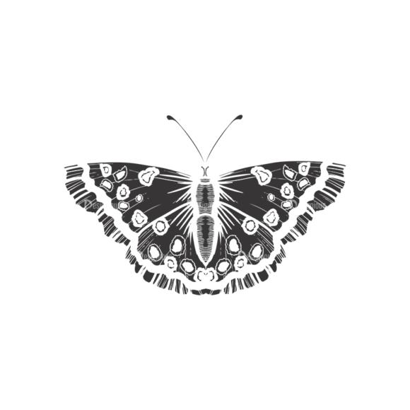 Butterflies Vector 1 12 butterflies vector 1 12 preview