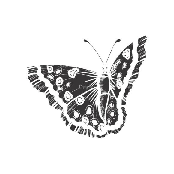 Butterflies Vector 1 13 butterflies vector 1 13 preview
