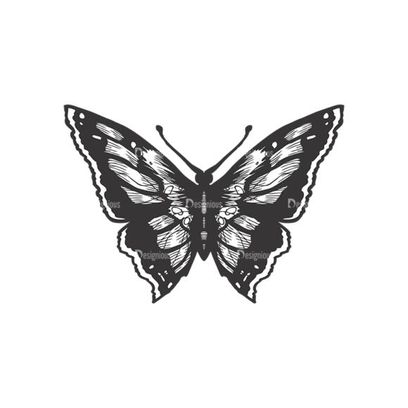 Butterflies Vector 1 8 1