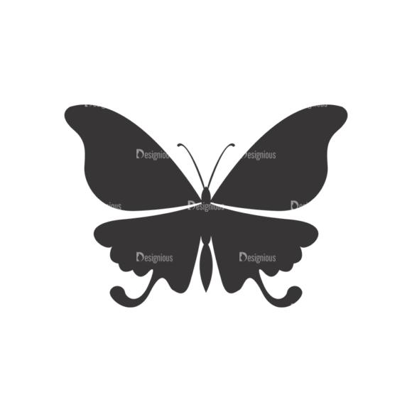 Butterflies Vector 3 16 1