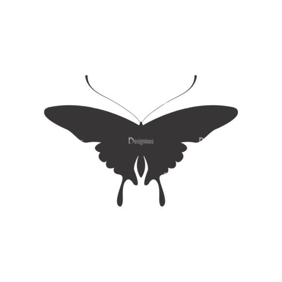 Butterflies Vector 3 17 1