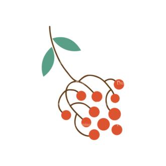 Christmas Vector Set 8 Vector Mistletoe Plant 07 Clip Art - SVG & PNG vector