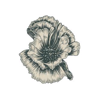 Decorative Flowers Vector Flower 01 Clip Art - SVG & PNG vector