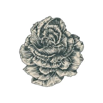 Decorative Flowers Vector Flower 02 Clip Art - SVG & PNG vector
