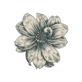 Decorative Flowers Vector Flower 05 Clip Art - SVG & PNG vector