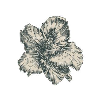 Decorative Flowers Vector Flower 07 Clip Art - SVG & PNG vector