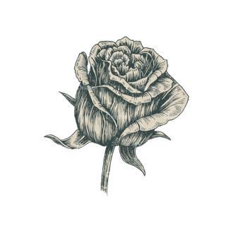 Decorative Flowers Vector Flower 08 Clip Art - SVG & PNG vector