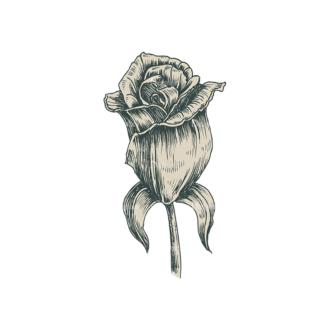 Decorative Flowers Vector Flower 10 Clip Art - SVG & PNG vector