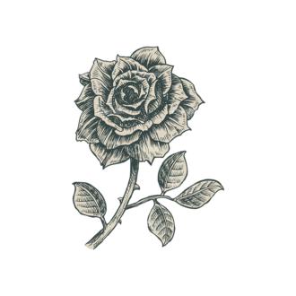 Decorative Flowers Vector Flower 11 Clip Art - SVG & PNG vector