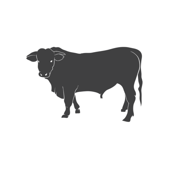 Domestic Animals Vintage Vector 3 Vector Cow domestic animals vintage vector set 3 vector cow