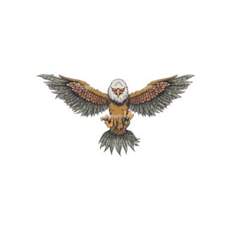 Eagles Vector 1 1 Clip Art - SVG & PNG vector