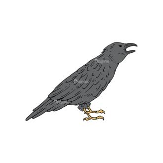 Engraved Halloween Vector Set 1 Vector Crow Clip Art - SVG & PNG vector