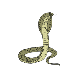 Engraved Wild Animals Vector 1 Vector Cobra Clip Art - SVG & PNG vector