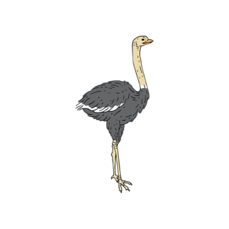 Engraved Wild Animals Vector 1 Vector Ostrich Clip Art - SVG & PNG vector