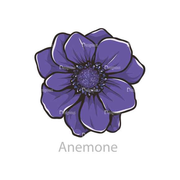Floral Vector 107 6 5