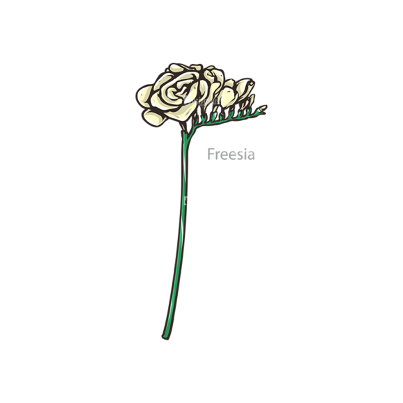 Floral Vector 108 7 floral vector 108 7 preview