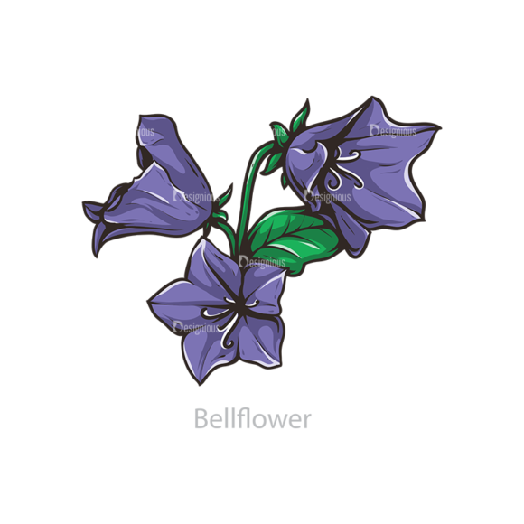 Floral Vector 109 6 5