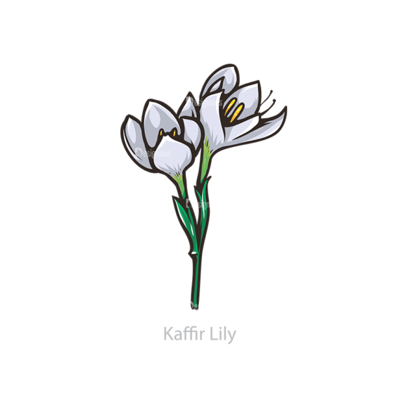 Floral Vector 110 4 5