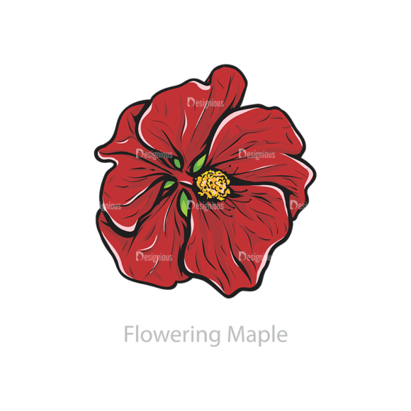 Floral Vector 110 6 5